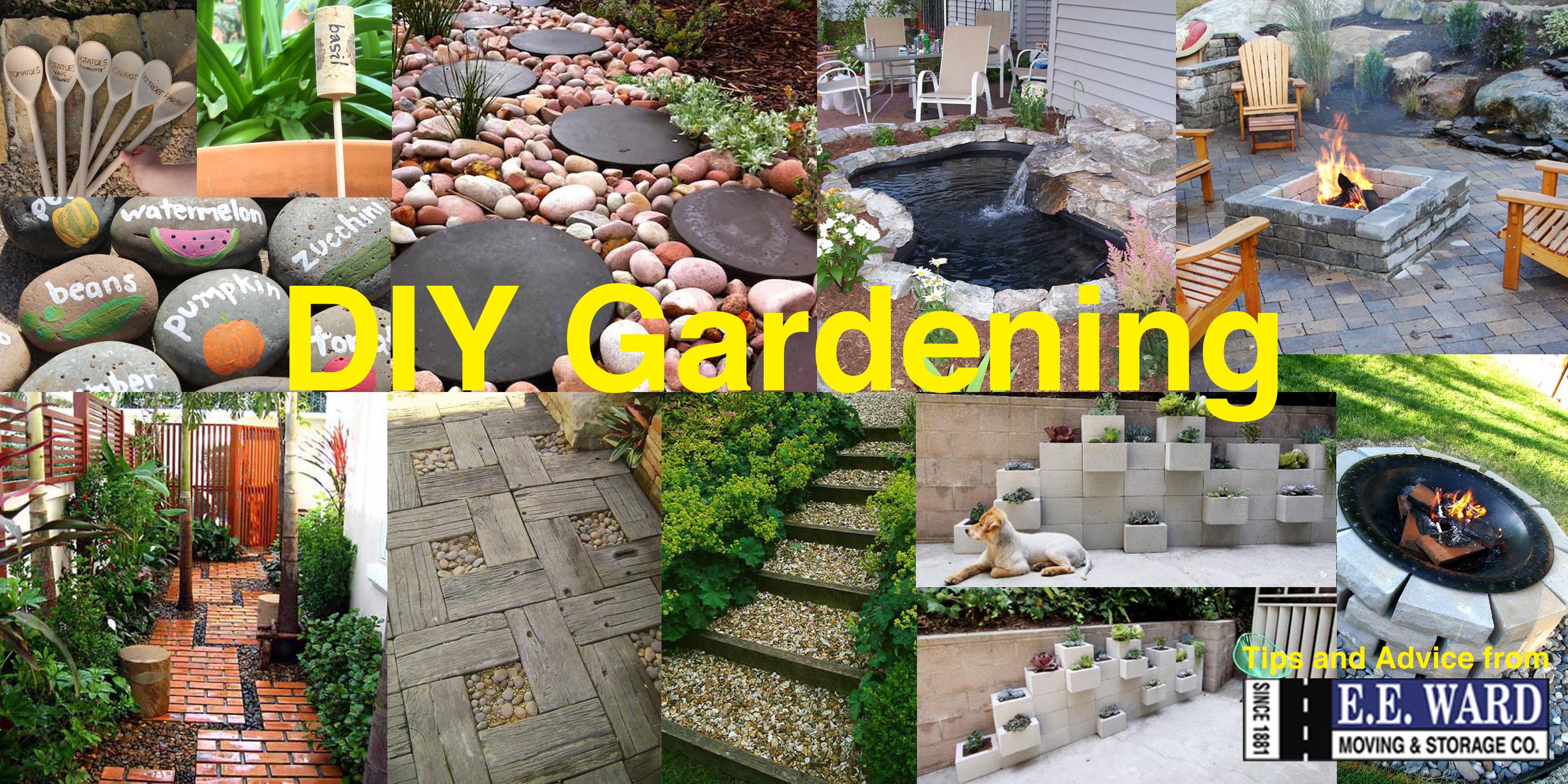 E.E. Ward DIY Gardening